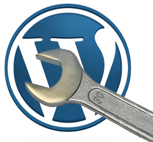 onderhoud / update abonnement WordPress